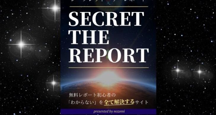レポート画像